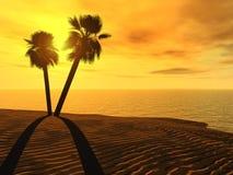 Palmeras y puesta del sol foto de archivo