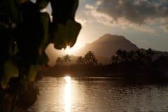 Palmeras y puesta del sol Fotografía de archivo