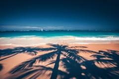 Palmeschatten auf dem tropischen Strand Punta Cana, dominikanisch bezüglich stockfotos