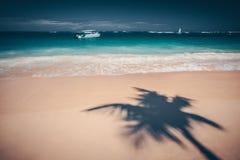 Palmeschatten auf dem tropischen Strand Punta Cana, dominikanisch bezüglich stockbilder