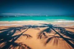 Palmeschatten auf dem tropischen Strand Punta Cana, dominikanisch bezüglich lizenzfreie stockfotografie