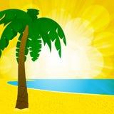 Palmestrand und glühender Hintergrund Lizenzfreie Stockfotografie
