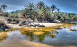 Palmet Beach på Vai, Kreta Arkivbild