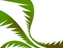 Palmettes vertes illustration libre de droits