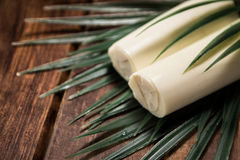Palmetto ingredient. Low calorie meal consumed in Brazil Royalty Free Stock Photo