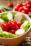 Palmetto salad. Low calorie meal Stock Image