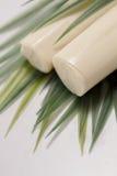Palmettoingrediënt stock afbeeldingen