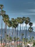 Palmgroep in Santa Barbara, Californië - stormachtige hemel royalty-vrije stock foto's