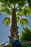 Palmhangmat met voeten in de zon HDR royalty-vrije stock fotografie