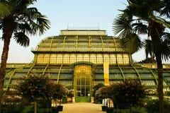 Palmhouse Imagem de Stock Royalty Free