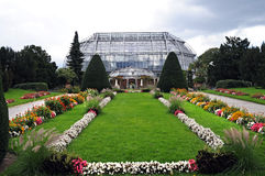 palmhouse Obraz Stock
