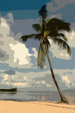 Palmier Image libre de droits