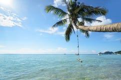 Palmier avec une oscillation accrochant là-dessus au-dessus de l'eau aux mers Photographie stock