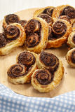 Palmier biscuits - french cookies made of puff pastry and chocol Stock Image
