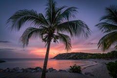 Palmier - coucher du soleil aux vues bleues du Curaçao de plage de baie image stock