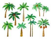 Palmier de bande dessinée Palmiers de jungle avec les feuilles vertes, vecteur d'isolement par paumes de plage de noix de coco illustration libre de droits