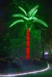 Palmier de Noël photos stock