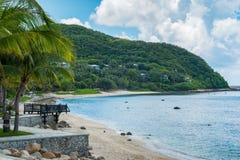 Palmier de noix de coco avec la belle plage tropicale Image libre de droits