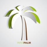 Palmier de papier Photographie stock