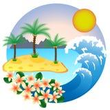 Palmier deux sur l'île tropicale Photographie stock