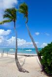 Palmier et bateau à un sable blanc renversant Photographie stock libre de droits