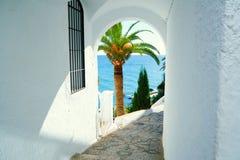 Palmier et cuvette vue par mer une voûte dans un mur blanc l'espagne Nerja Photographie stock libre de droits