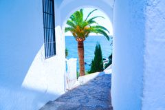 Palmier et cuvette vue par mer une voûte dans un mur blanc l'espagne Nerja Photo stock