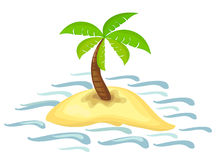 Palmier sur l'île Images stock
