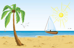 Palmier sur la plage de sable Photo stock