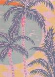 Palmiers. Images libres de droits