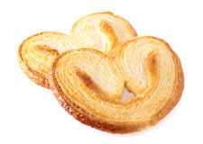 Palmiers Fotos de Stock