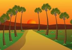 Palmiers Images libres de droits