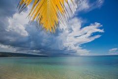 Palmiers au-dessus de lagune tropicale avec la plage sauvage image libre de droits