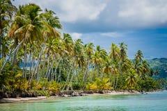 Palmiers au-dessus de lagune tropicale avec la plage sauvage photo stock
