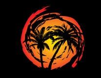 Palmiers avec le soleil Photo stock