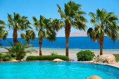 Palmiers d'été sur la promenade côtière donnant sur la Mer Rouge et la piscine, concept de voyage en Egypte, Sharm el Sheikh Images libres de droits