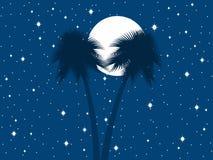 Palmiers dans la perspective de la lune et du ciel étoilé Vecteur Images libres de droits