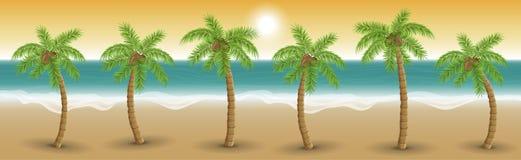 Palmiers dans une rangée sur la plage dans le coucher du soleil, illustration de vecteur Photographie stock