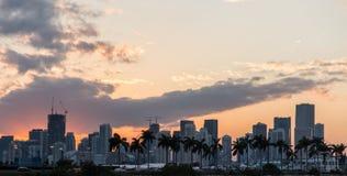 Palmiers de coucher du soleil de paysage de Miami Photos stock