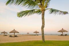 Palmiers de noix de coco sur la plage sablonneuse blanche, papier peint de fond de vacances de vacances Vue de plage tropicale ge Photographie stock