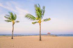 Palmiers de noix de coco sur la plage sablonneuse blanche, papier peint de fond de vacances de vacances Vue de plage tropicale ge Photo libre de droits