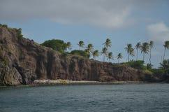 Palmiers des Cara?bes de mur de roche et plage en pierre photographie stock libre de droits