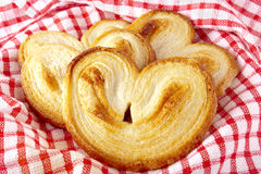 Palmiers (elephant ear) Royalty Free Stock Photo