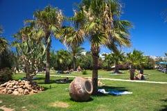 Palmiers et bac sur l'herbe Photos libres de droits