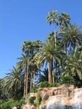 Palmiers et cascade à écriture ligne par ligne de paradis Images stock