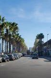 Palmiers et double pont Barcelone Images libres de droits
