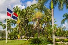 Palmiers et drapeau Dominicana Image stock