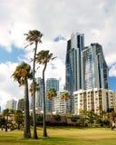 Palmiers et gratte-ciel Photo stock