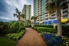 Palmiers et jardins le long d'un passage couvert en Virginia Beach, Vierge Photo stock