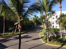 Palmiers et l'hôtel photographie stock